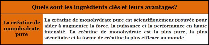 Creatine Ingredients
